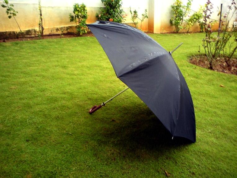 umbrella lawn