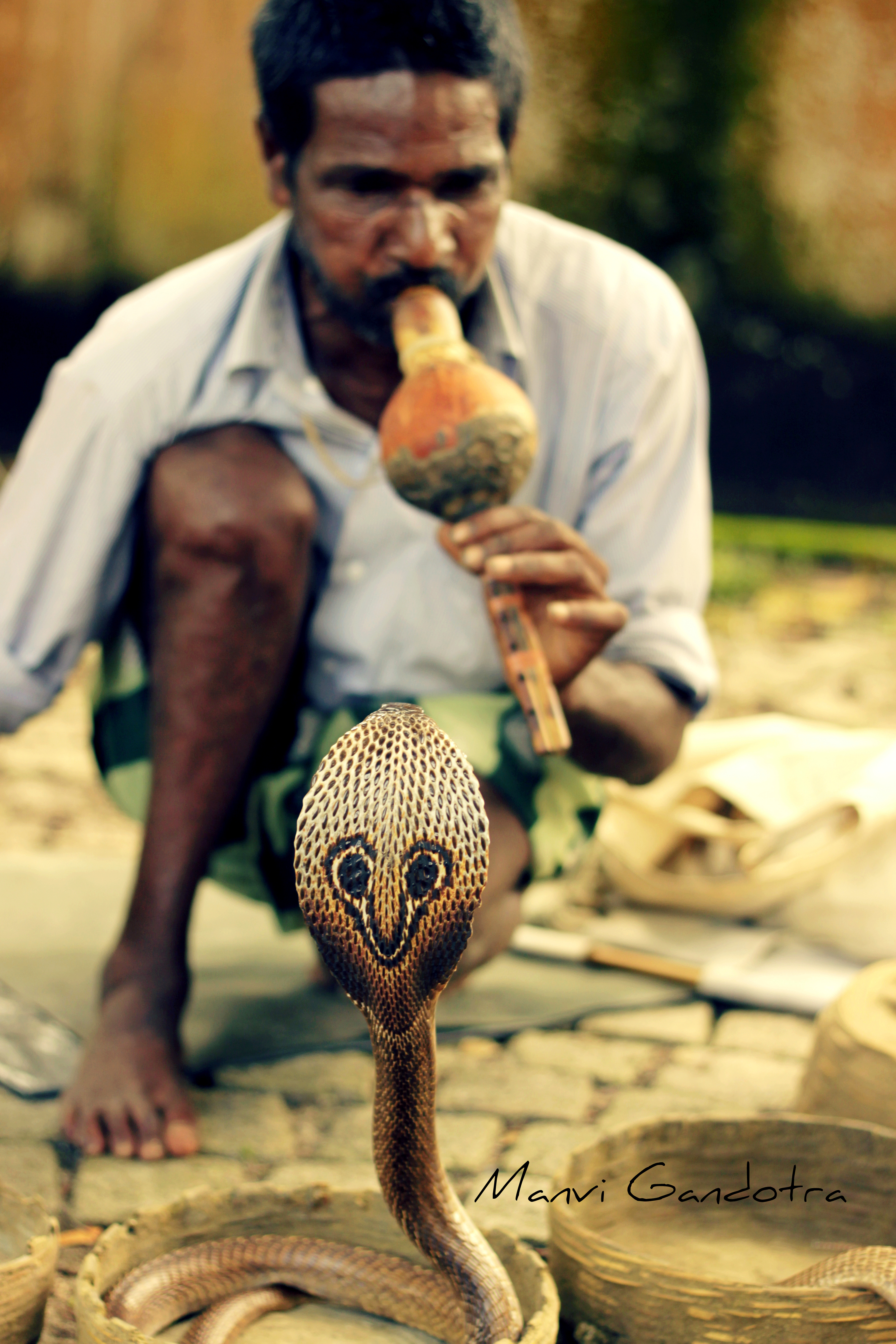 The Charmer Pages Lisa Kudrow For More: The Indian Snake Charmer