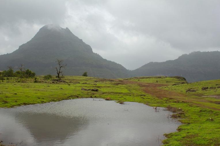 Malshej Ghat - A serene beauty