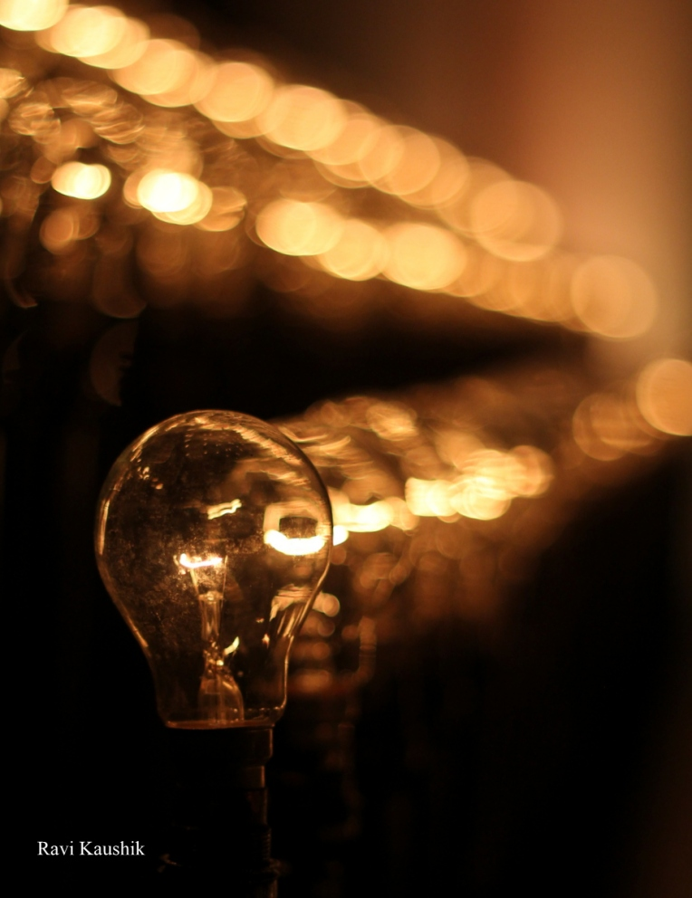 One of a kind Light Bulb