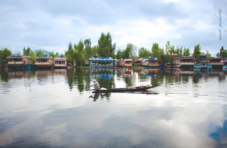 Srinagar 1